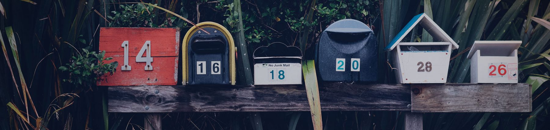 Our 2 Biggest Tips for Mailer Success